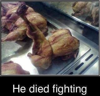 Chicken. . He died fighting. Hitmonlee died fighting