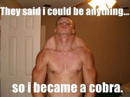 Cobra. . Thant said I M so i became a coma.. wat.