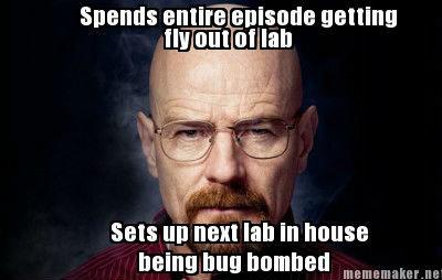 Confusing Walt. Oh Walt..