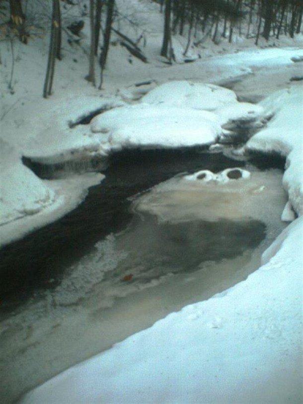 COOKIES?. . Cookie monster creek
