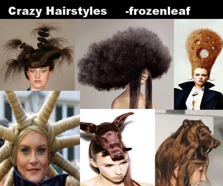 Crazy Hairstyles. damn. Crazy Hairstyles - Crazy hairstyles wow WTF