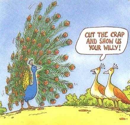 Cut the crap...