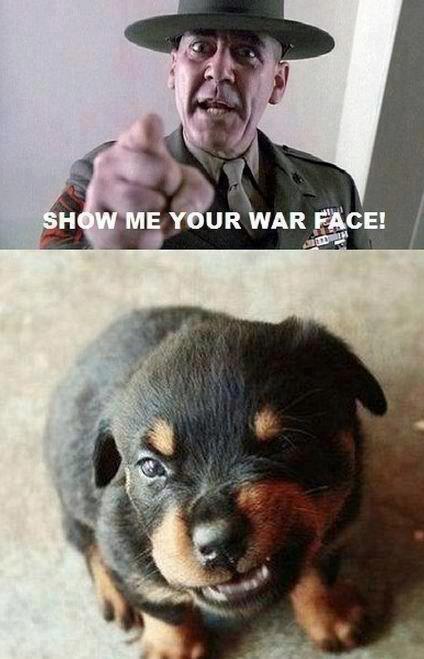 Cute OC lol. WAR FACE . lidell ' F, jthm WAR 'i! 9, Uter.