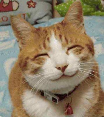 Cute pussy. .. Smiile