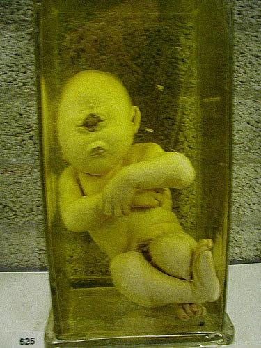 cyclops baby. .