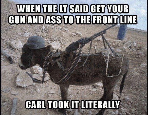 """dammit, Carl!. . iii' miimii tji'"""""""