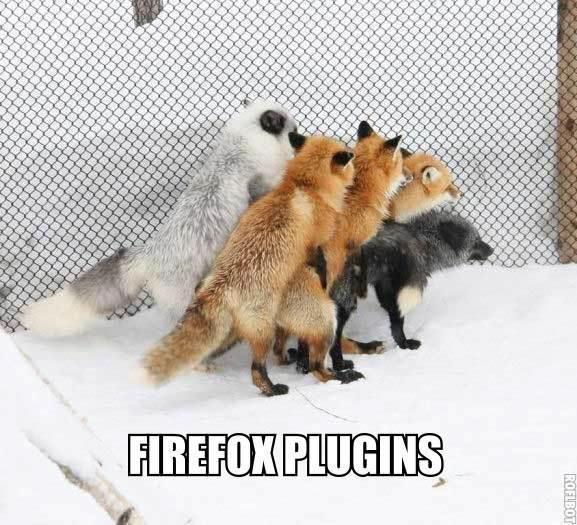 Damn Firefox. . If 11111111111111 1 1 11 1 1 111111 111111111111 11 11111111111111 1 11111111111111111. 111111111111111 1 111111111111 1 . 1 1 1 1 1 1 1. 111111 lol fuck my tiny ASS Mr Fox