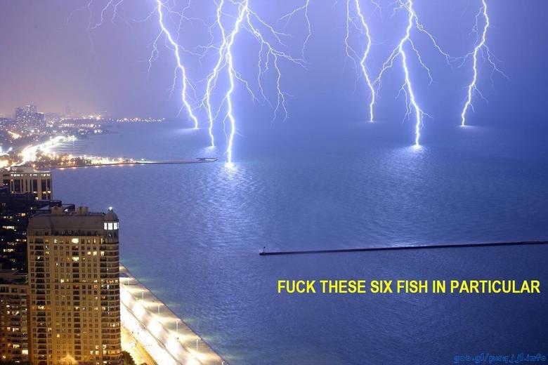 damn. god.. ilk. God is supercharging sharks in preparation for Shark Week.