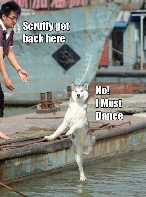 Dance the dance of life!. . Tai