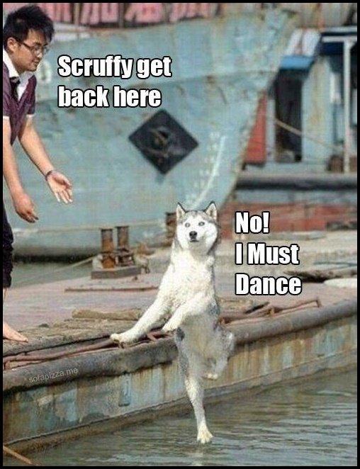 Dance. .. Take this.