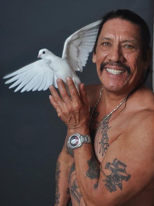 Danny Trejo holding a dove. Magical.. Animal's love him!
