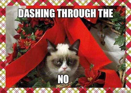 Dashing Through The No. . ifa