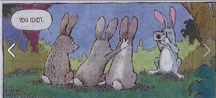 DAT BUNNY!. look at the bunny being stupid HAHAHAHA LE LELELE TROLOLOL xDDDDDDDDDDDDDDDD.. Nice.