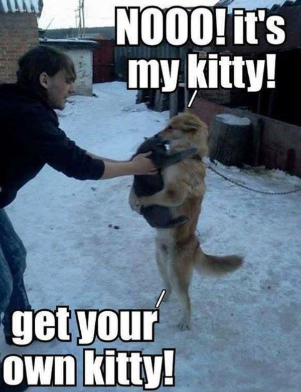 Daww. . mu gum! fervour/ own kitty!. DEER LORD IT IS HAPPENING ALREADY