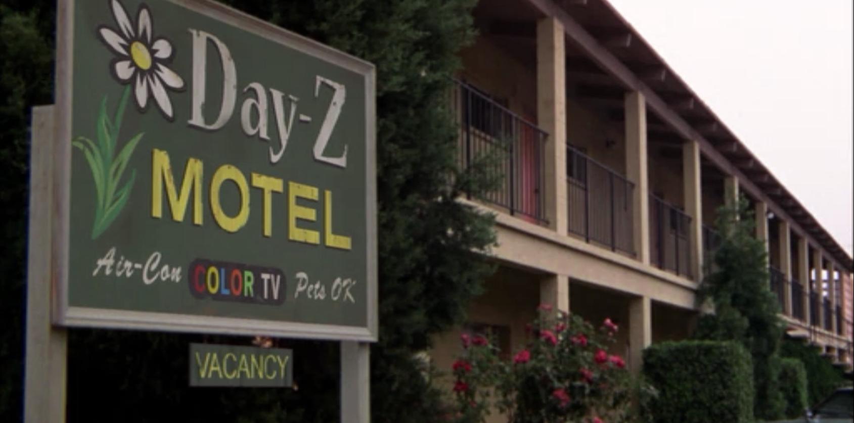 DAY Z Motel. Day z Motel.. Oh, I get it. Rosebush instead of daisies.