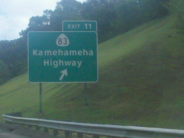 DBZ FTW. .. Kamehameha was a Hawaiian king.