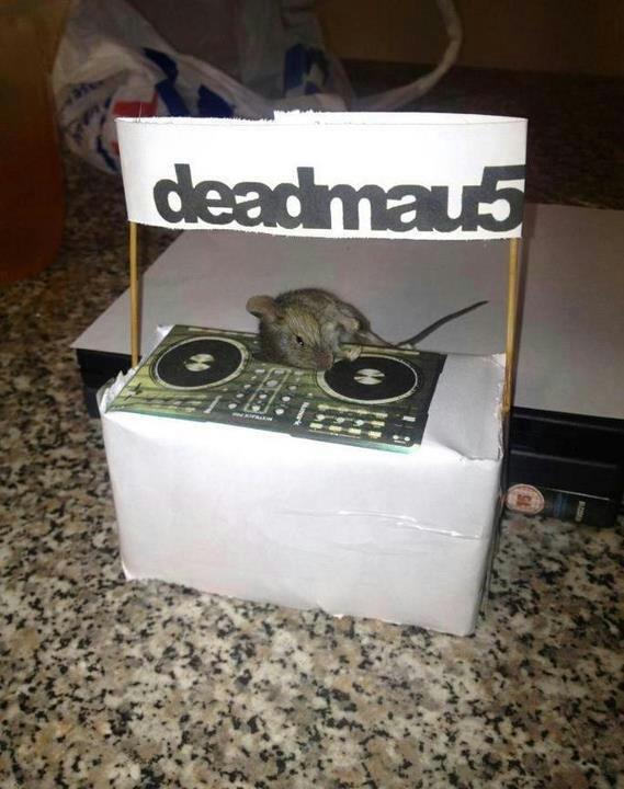 Deadmau5. Dead mouse.. DEAD?!