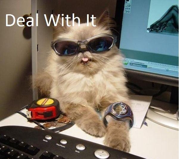 Deal wit it. desc.