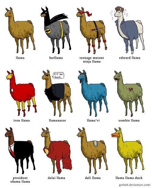 different Llama. . llama teenage mun tta edward mm: iron In: ' vi zombie an president dalai llama dali an llama llama duck. it should be barack ollama