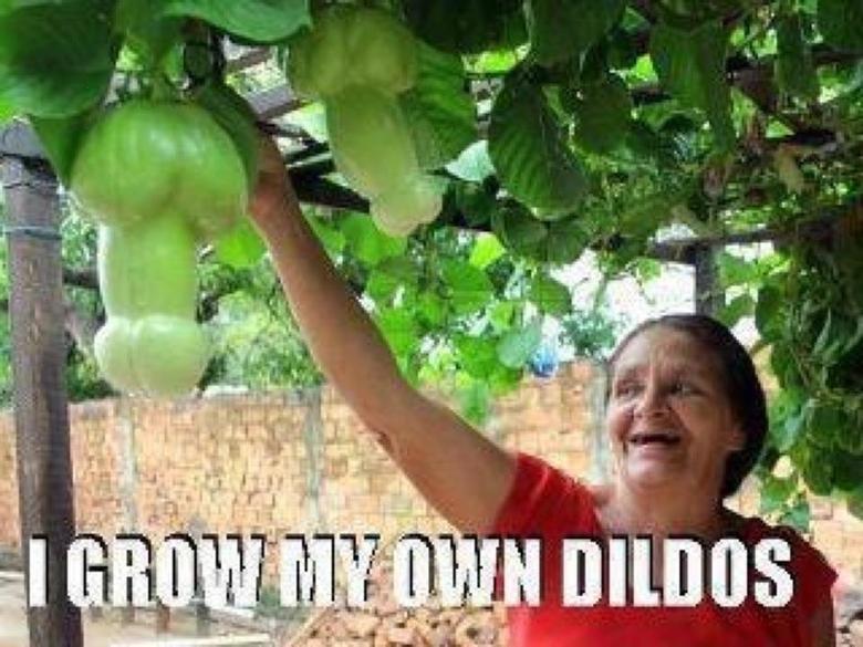 Dildos. .. Looks like OP's personal garden.
