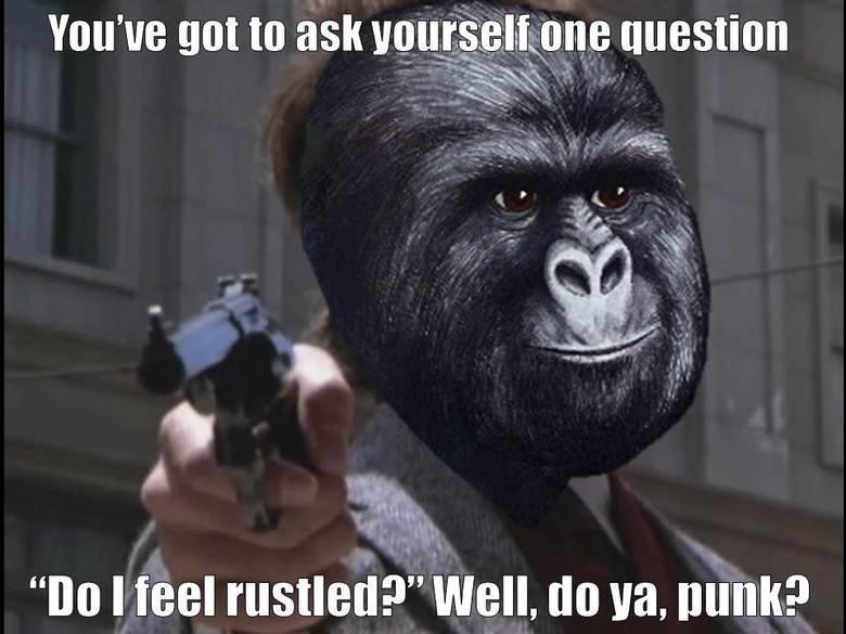 Dirty Harry. . You' got to ask ! % Iai. hone molestion To Heel '' Well, do Bill,