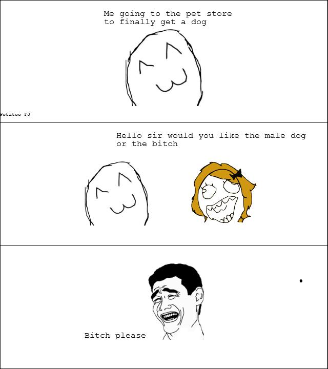 Dog Store. .