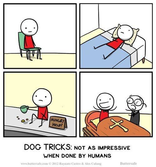 Dog tricks. Sit, Lie Down, Beg, Play Dead. DOG TRICKS: NOT AS IMPRESSIVE HHEH new tty HUMANS. I dunno, that last one seems pretty impressive.