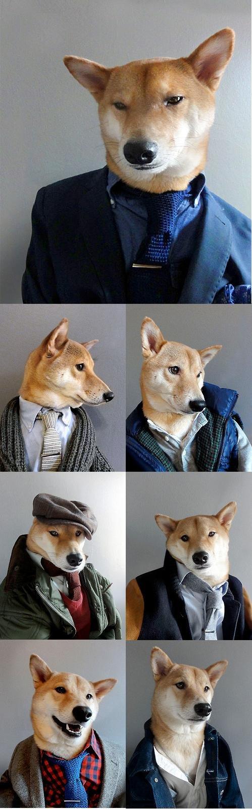 Doggy Style. i got it off tumblr.