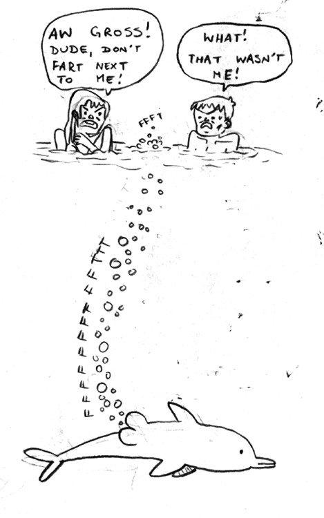 Dolphins cause break ups. wubba wubba (picture not mine).. me when fartin under water.