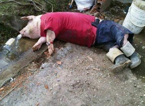 Drunk as a pig. .. rape on a stick