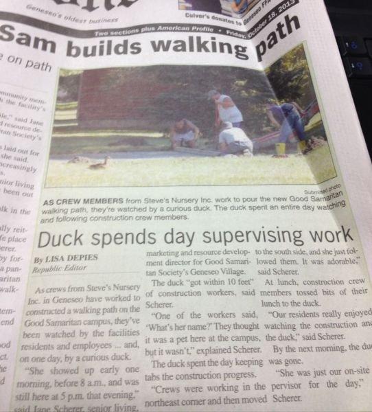 "Duck Boss. . Duck spends day supervising war l a, ml "" f' 1 . sad member arsed bitt at taur imasinner Duck day work"