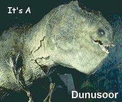 Dunusoor. There is no description..