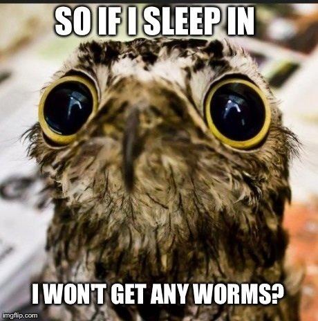 Early bird gets the worm. . I WUNT MW