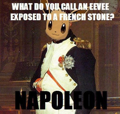 "Eevee's Final Evololution. Napoleon <3.. Napol-eon used ""Invade Russia"" The move failed. Adolf Hilter used ""Mimic Move"" The move failed again!"