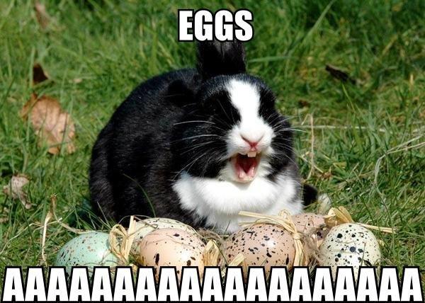 EGGGGGGS. AAAAAAAAAAAAAAAAAAA.. Time for bed... aaaaaaaa Eggs
