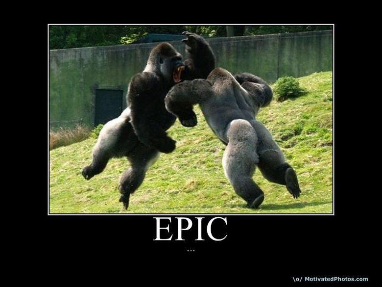 Epic gorilla. . lo/ Ma titrated ntnu. cu::. Looks like... There's an immanent case of.. puts on sunglasses Guerilla warfare... YEEEEEAAAAHHHH