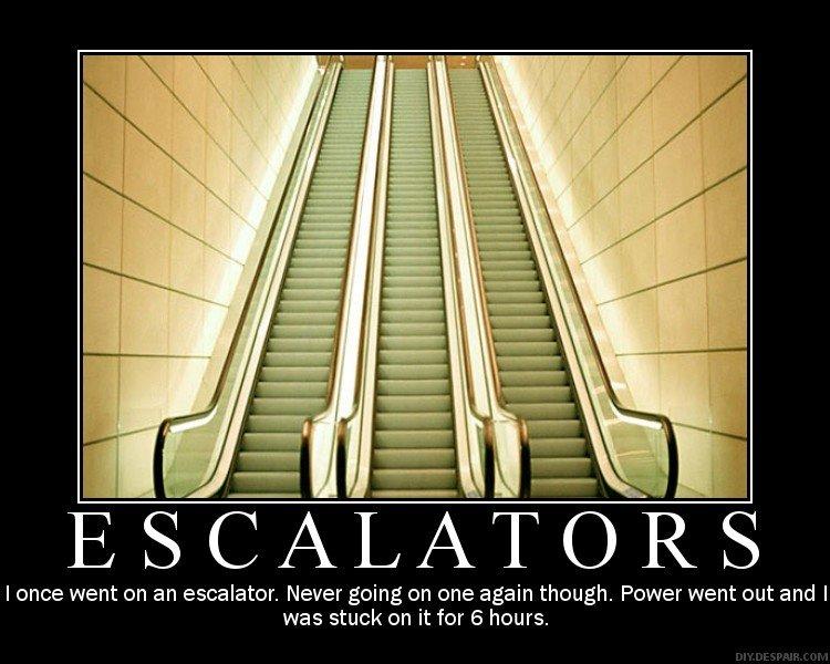 Escalators_348e46_287441.jpg