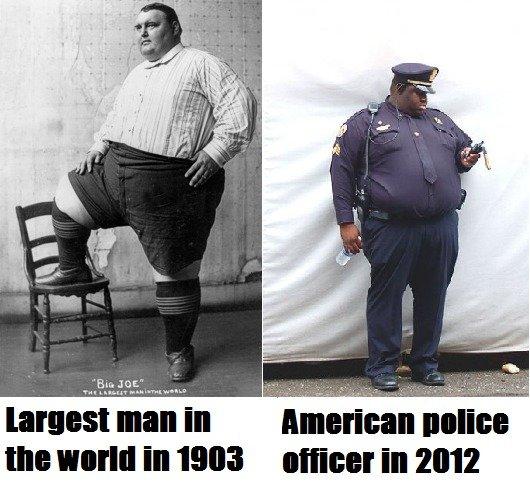 Evolution of Obesity. .