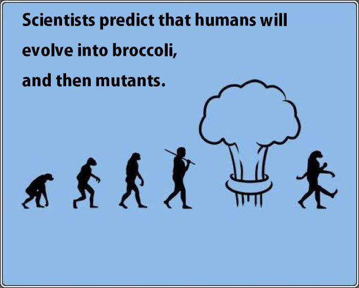 Evolution. .