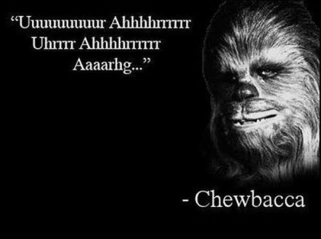 "Fcking words of wisdom. . Chewbacca. ""Arrrrrrrrr"" -Horatio 'Sea Captain' McCallister"