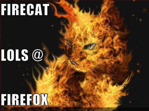 FIRECAT VS FIREFOX.. FIRECAT VS FIREFOX... I tell you if have tried IE ,FireFox Rocks!