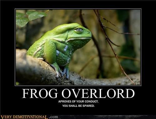f. obey him.