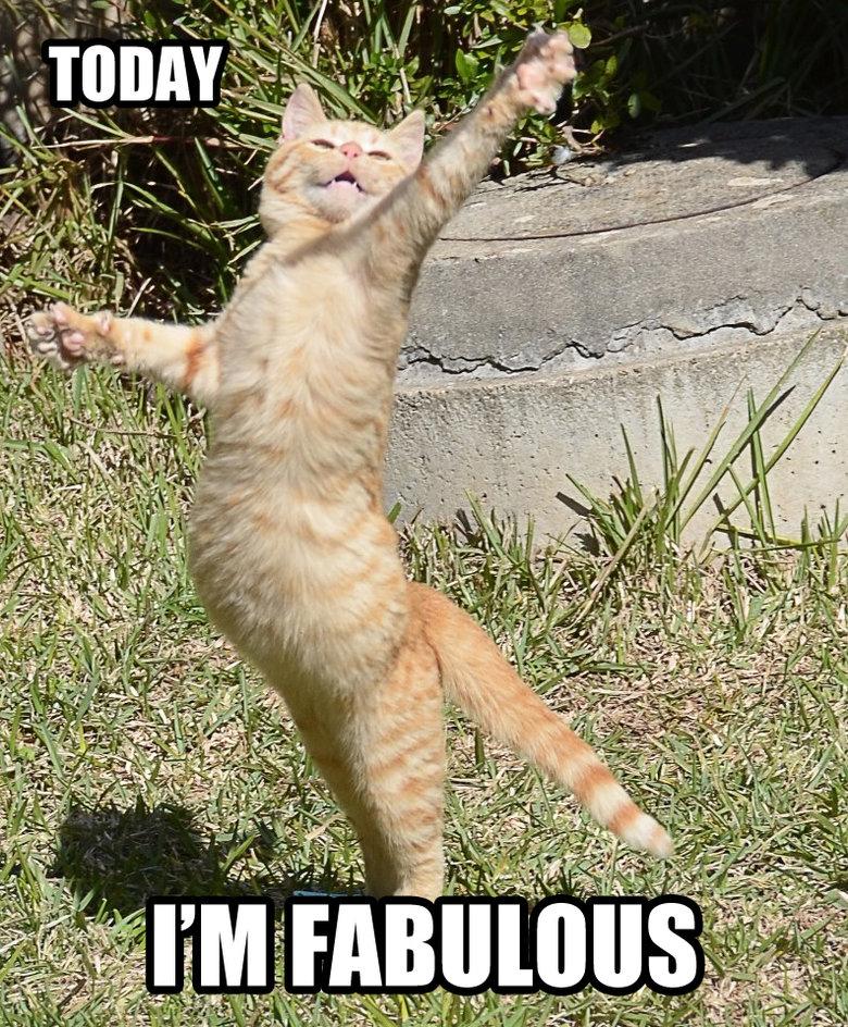 Fabulous!. That's how I feel.
