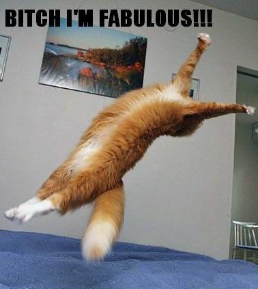 Fabulous. Meh.