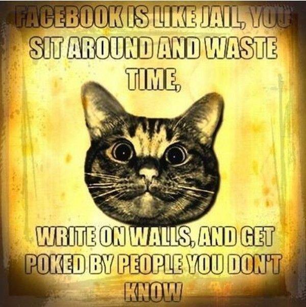 facebook. .. Hooray for reposts.