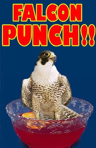 Falcon Puns. .