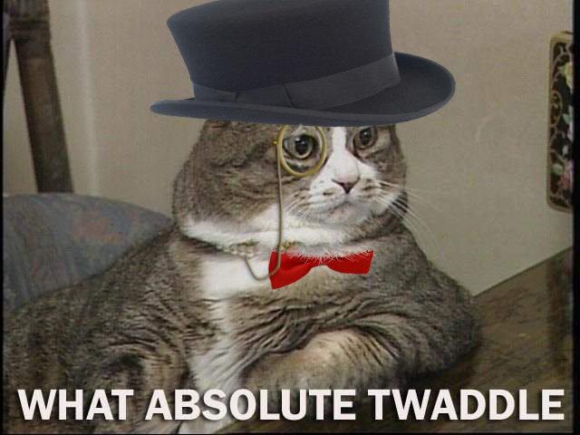 tea time fancy cat 640x480