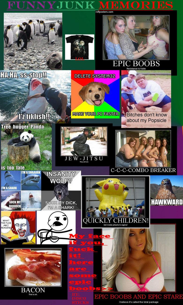 favorite funnyjunk memories. some of my favorite funnyjunk moments.. compilation funny combobreaker discosticks