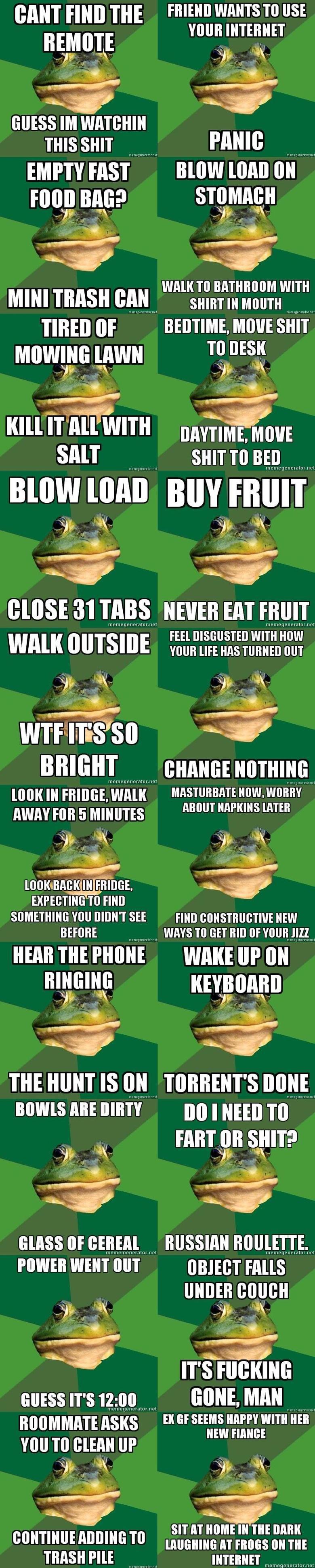FBF. lets bring this guy back!.. Bachelor frog is best frog