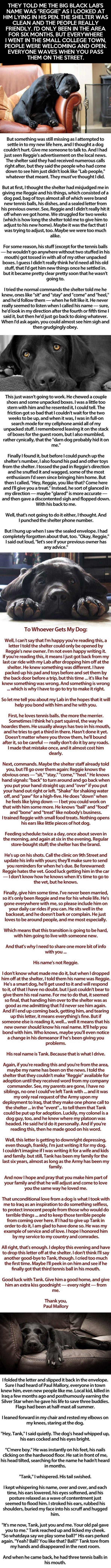 Feel dog story. I cried a bit.